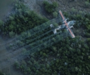 Agent Orange Wasn T The Only Deadly Chemical Used In Vietnam