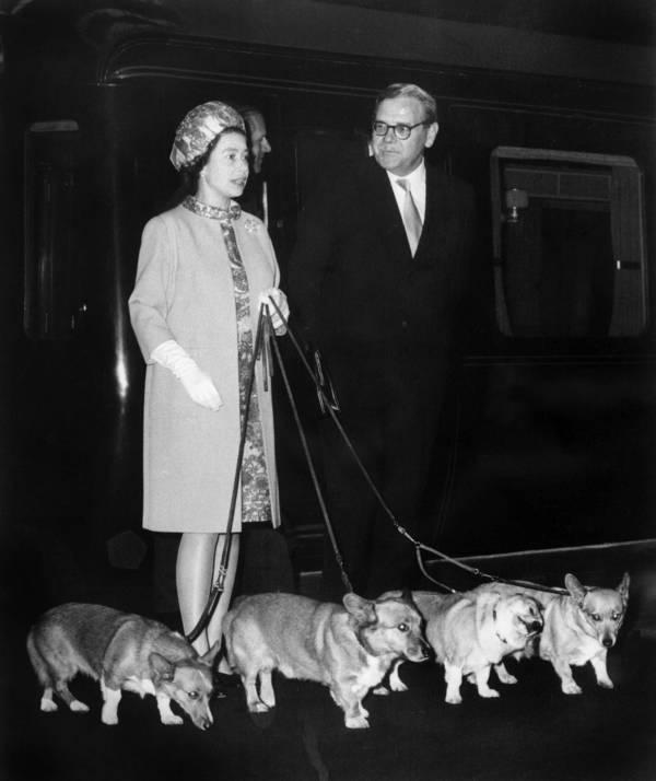 Queen Elizabeth II Pictures With Her Corgis