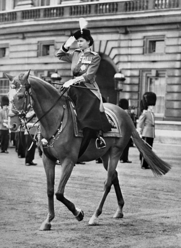 Riding A Horse Through Central London