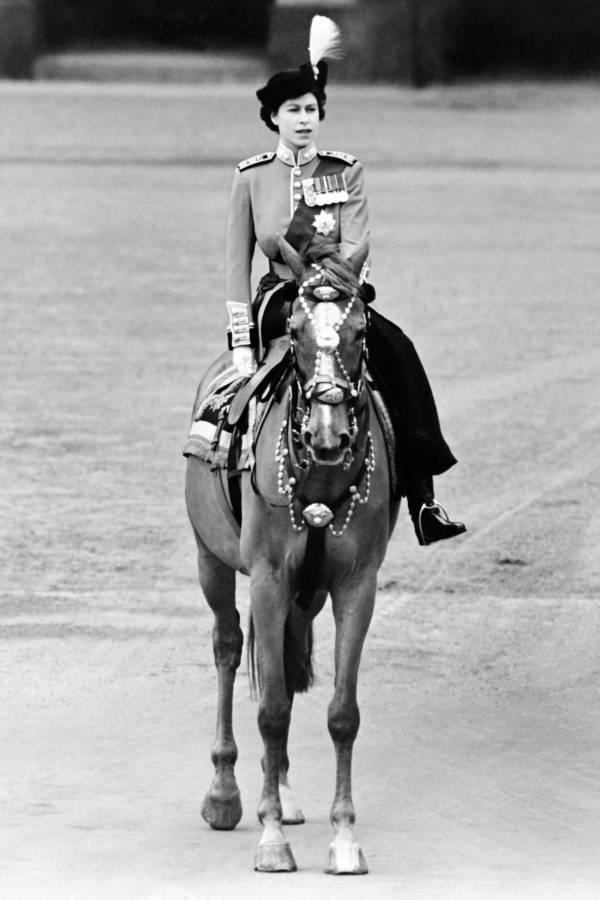 Queen Elizabeth Ii Side Horse