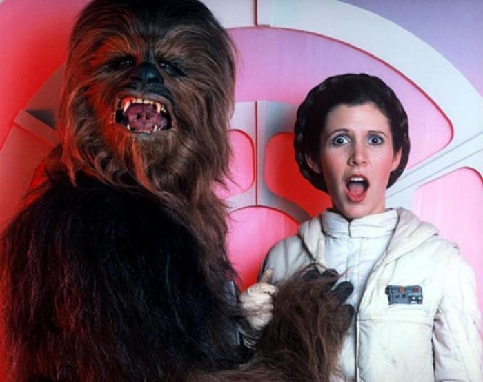 Chewbacca And Leia