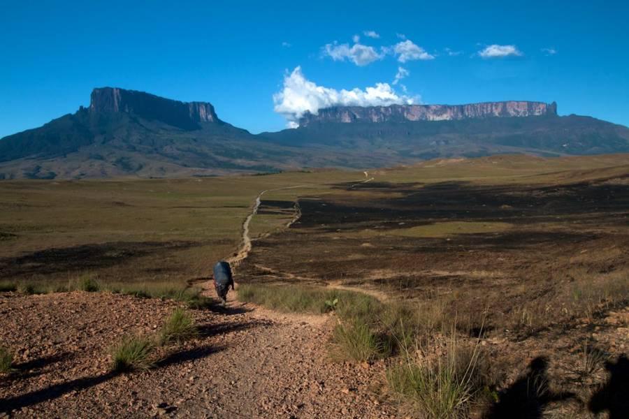 Pathway To Mount Roraima