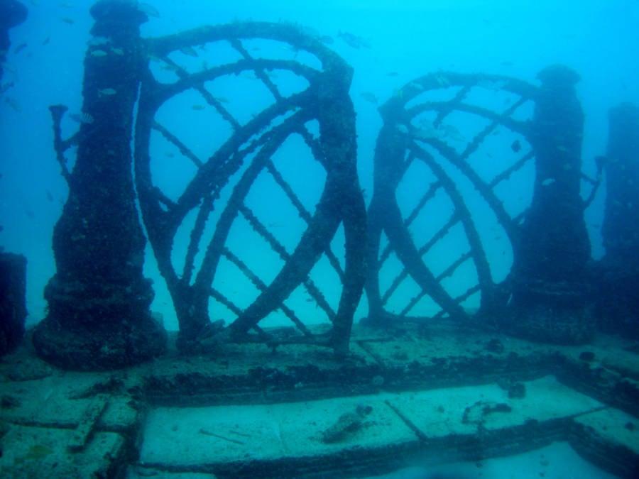 Neptune Reef