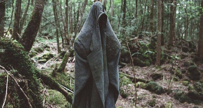 Image result for aokigahara forest