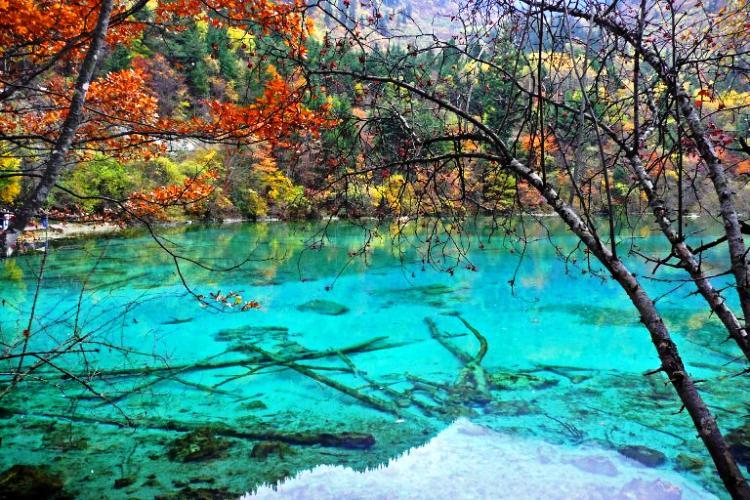 Five Flower Lake Photograph
