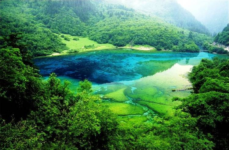 Five-Flower Beautiful Lake