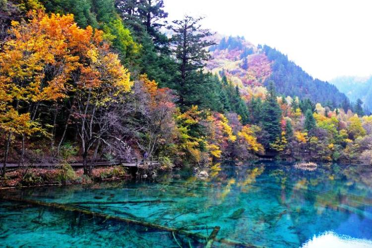Five-Flower Lake Photo