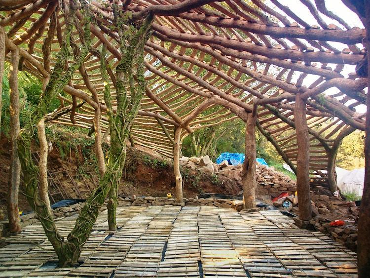 Hobbit House Construction
