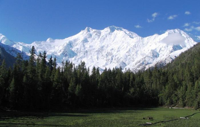 Nanga Parbat of Pakistan Climb