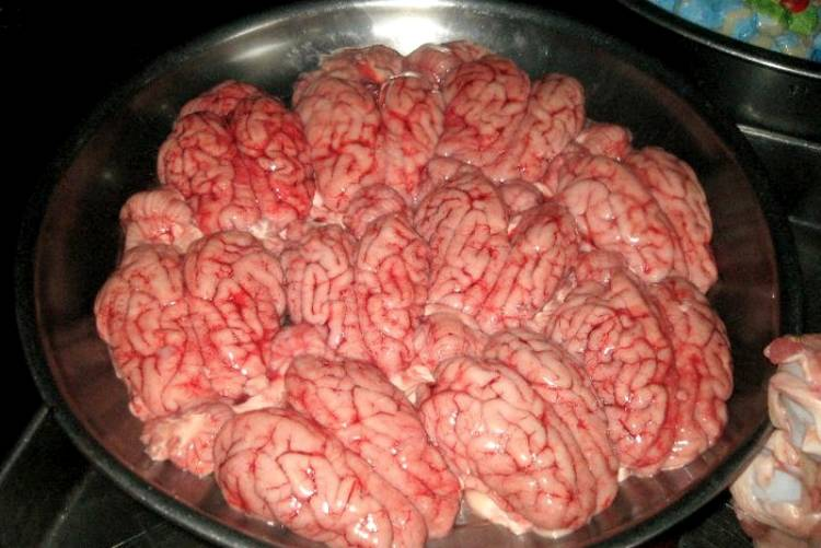 Craziest Dishes Of The World Fried Brain Sandwich