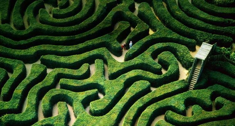 Longleat maze