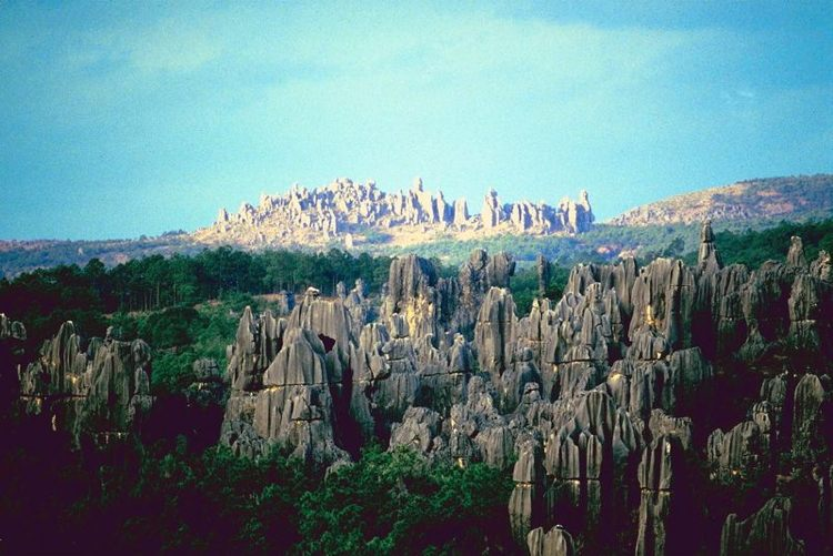 A View Of Chinas Stone Forest