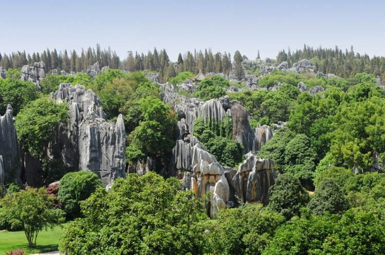 Chinese Rock Formations In The Stone Forest