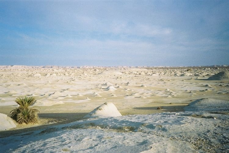 The Pale Rock Formations In The White Desert