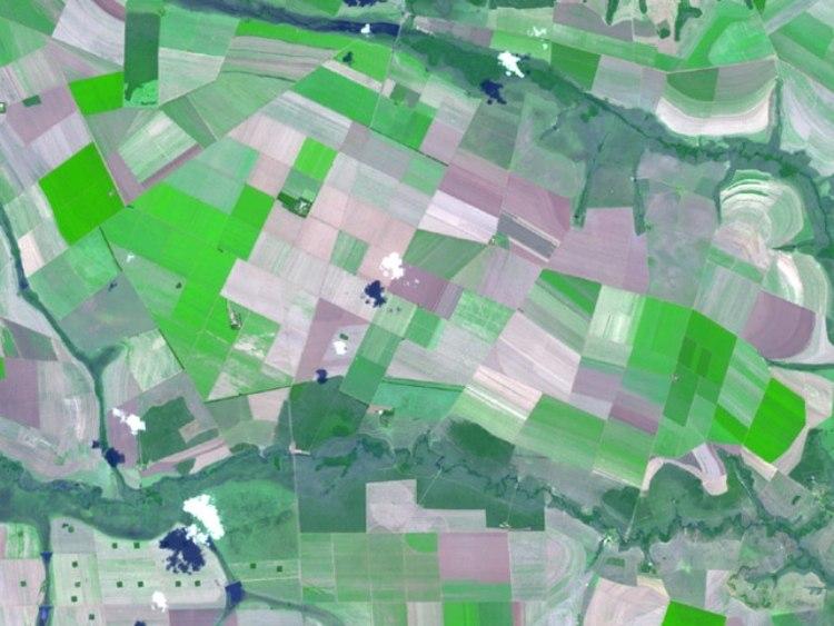 Cerrado Brazil From Space