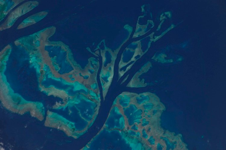 Barrier Reef Images Of Earth From Space
