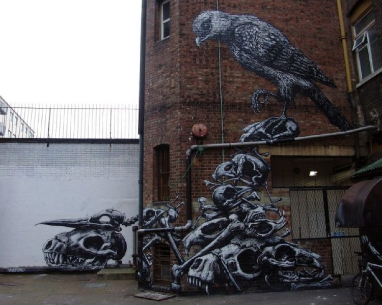 Morose Birds