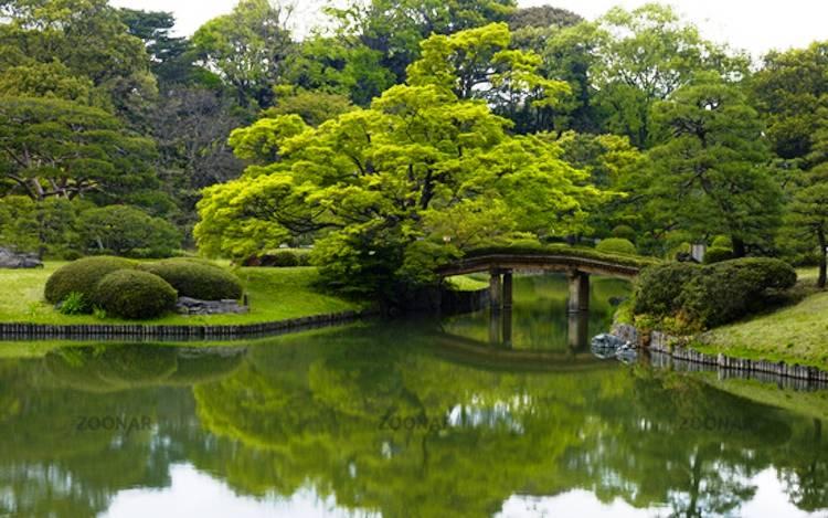 Beautiful Gardens Rikugien Garden Photography
