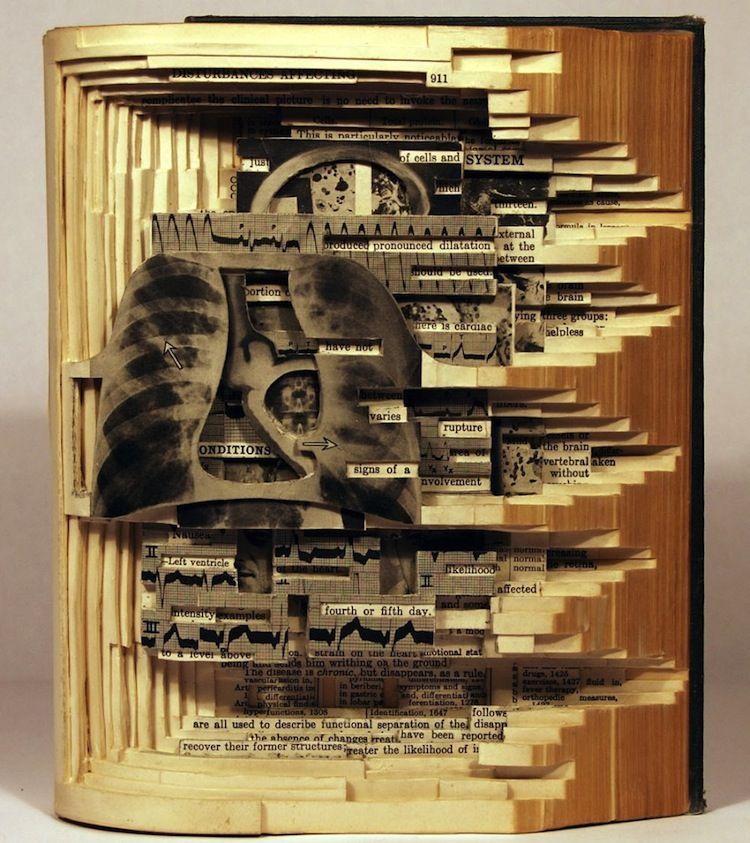 Brian Dettmer Book Artist