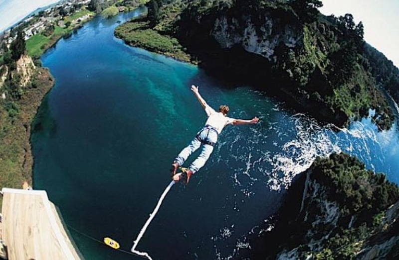 Crocodile Bungee Jumping Picture