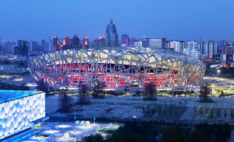 Birds Nest in China