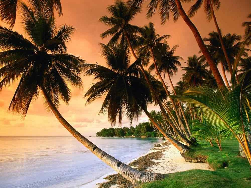 Micronesia Blissful Blue Lagoon Beach