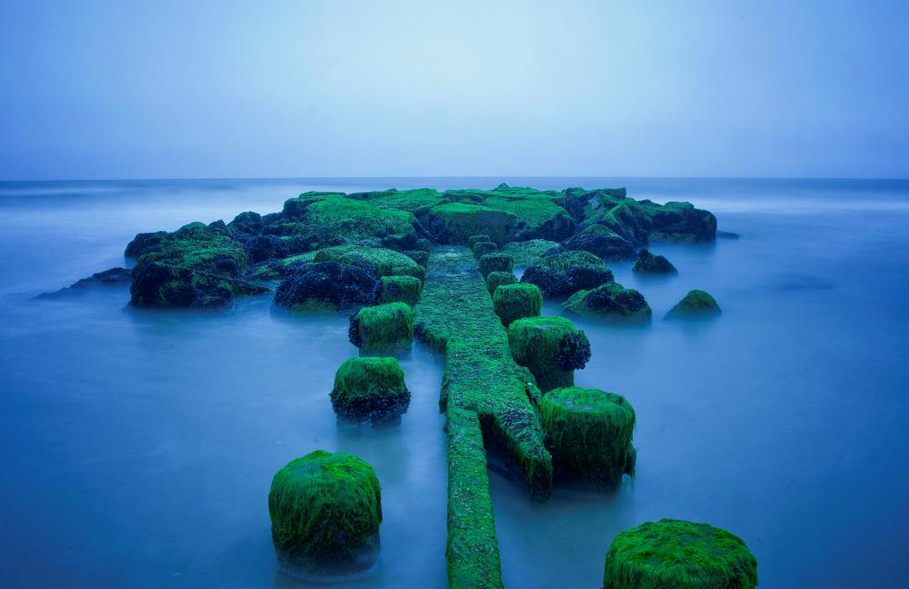 Emerald Islands New Jersey Photograph