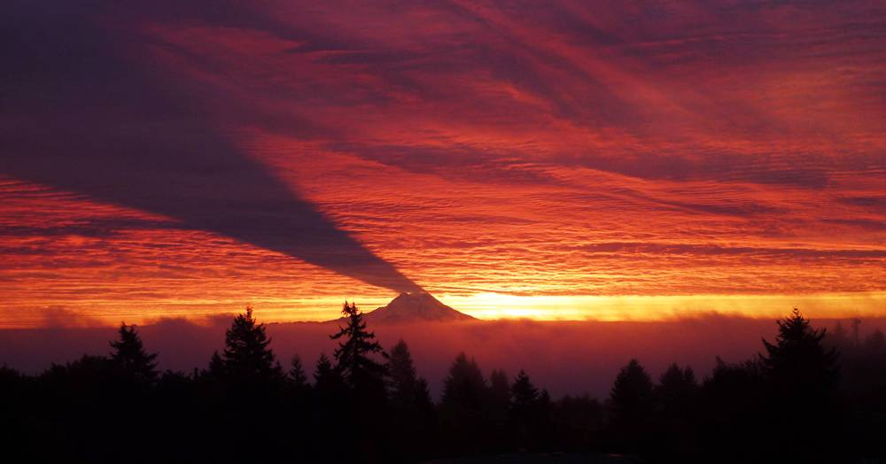 A Shadow Over Mount Rainier Photograph