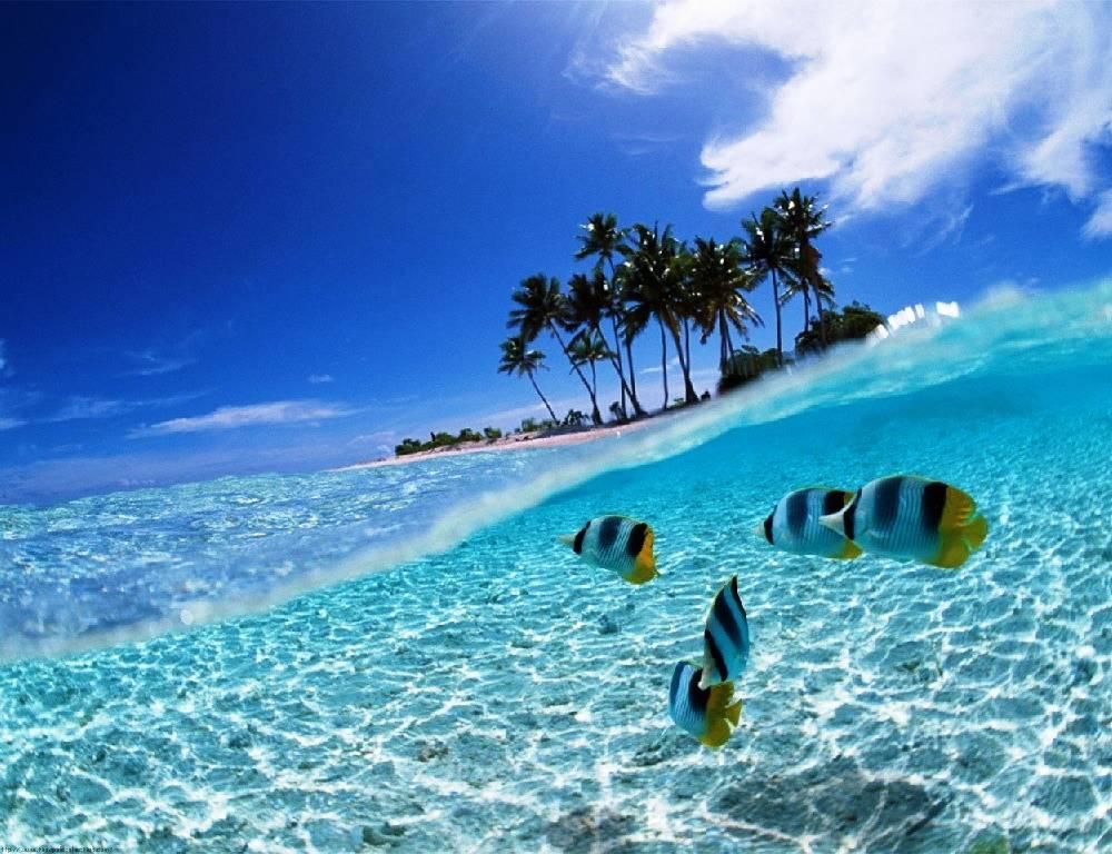 bunaken-national-marine-park-indonesia