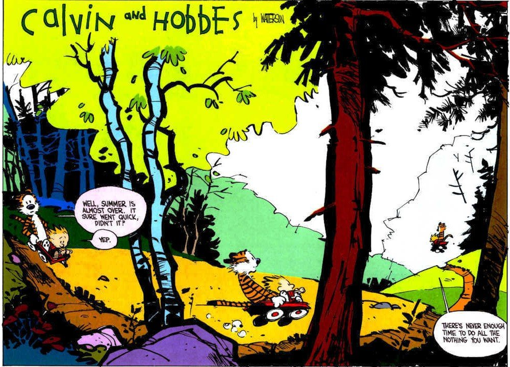 Calvin Hobbes Farewell to Summer Comic