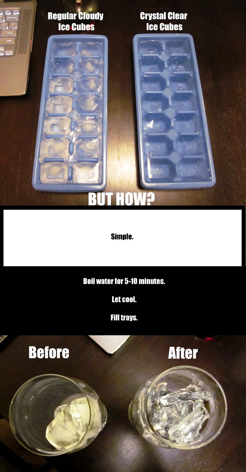 Life Pro Tips Clear Ice Cube
