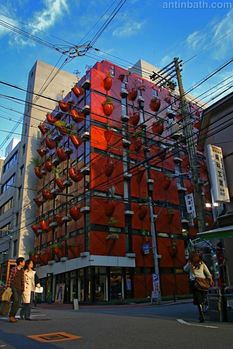 japan-architectural-marvels-organic-building2