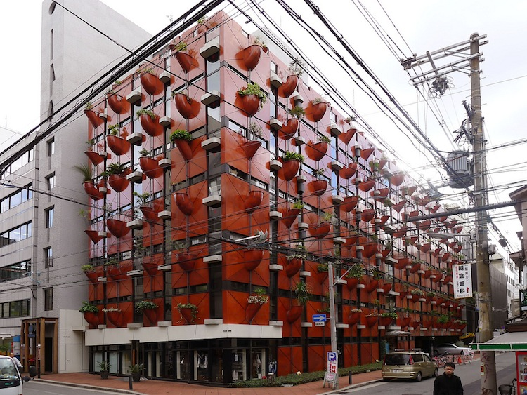 japan-architectural-marvels-organic-building3
