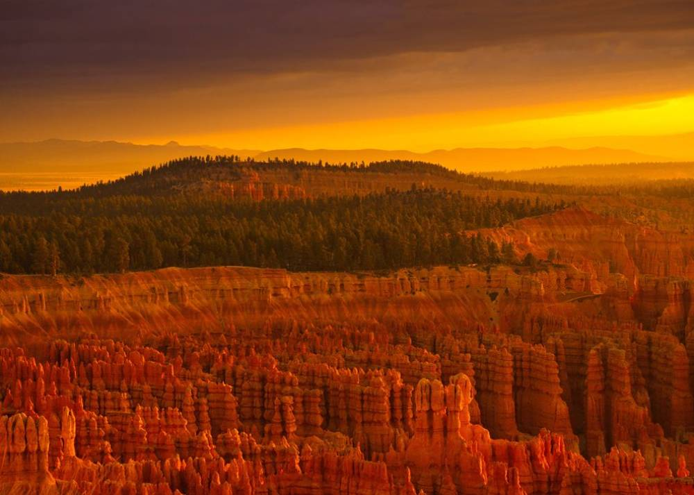 Sunrise In Bryce Canyon