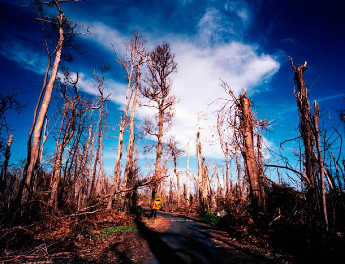 Climate Change's Impact Queensland Damage