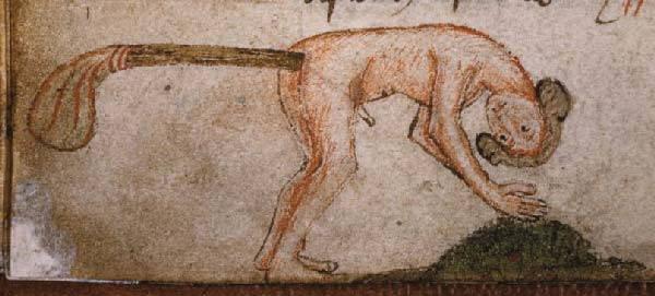 Medieval Clysters