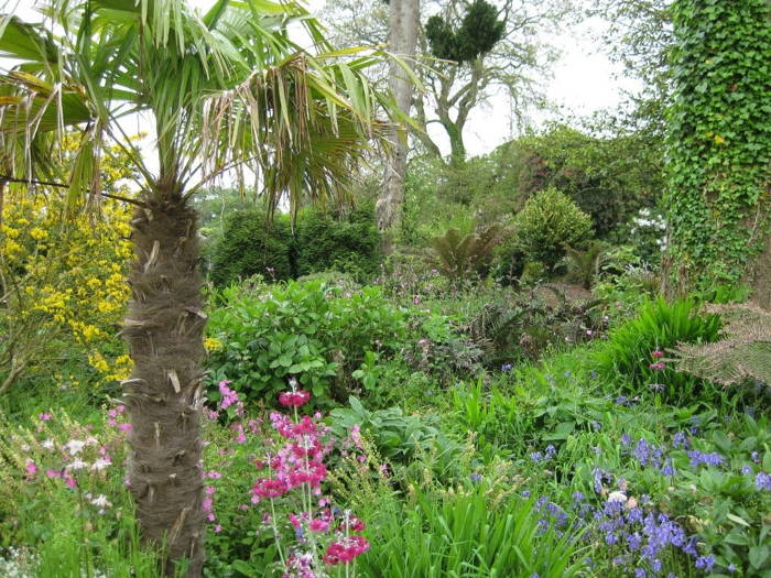 Most Peculiar Gardens Heligan
