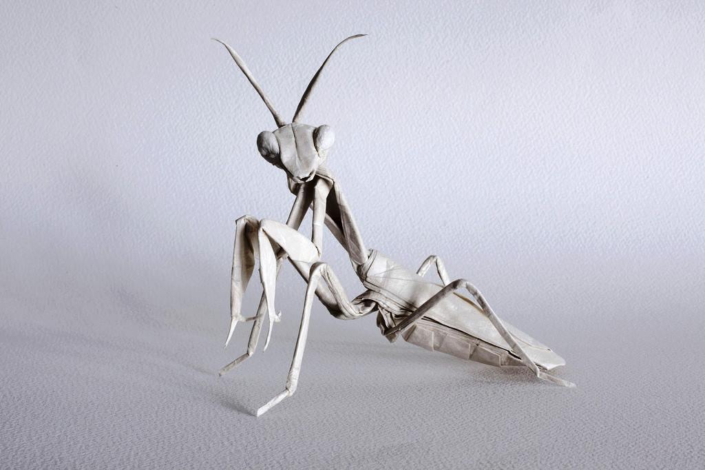 Incredible Origami Mantis