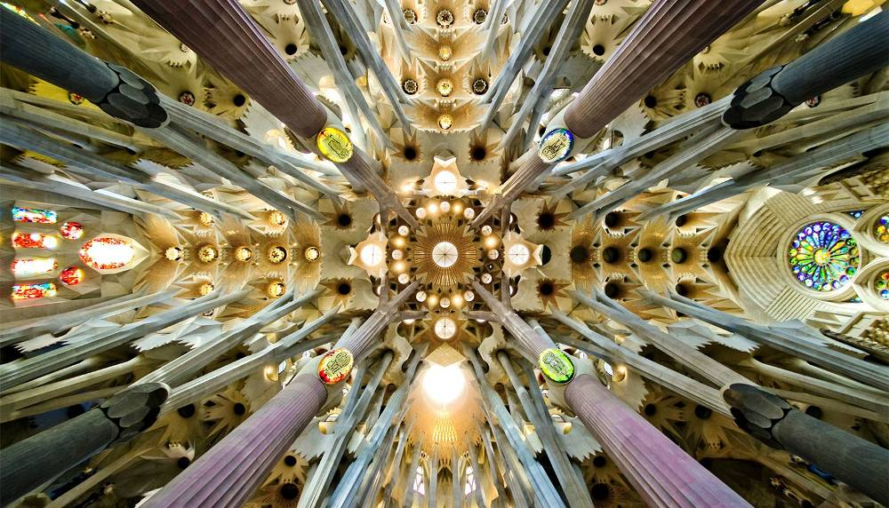 The Ceiling Of The Sagrada Familia