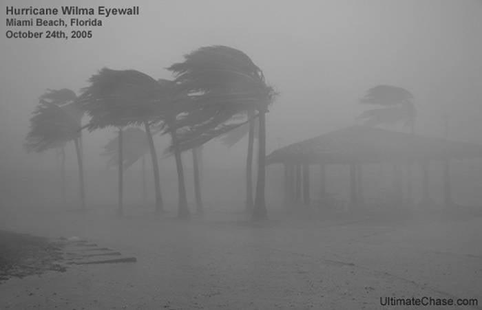 Devastating Hurricanes Wilma