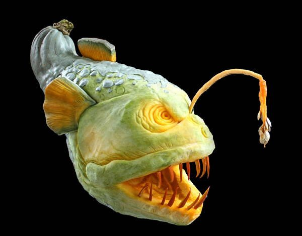 Jack-O-Lantern Angler Fish