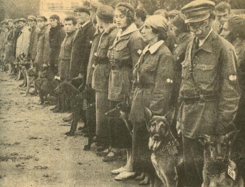 Soviet Dog Training