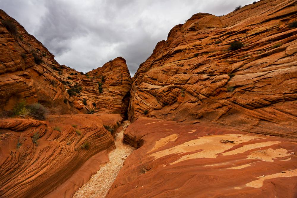 The Winding Wire Pass Of Kolob Canyon