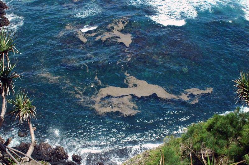Tiny Islands Home Reef