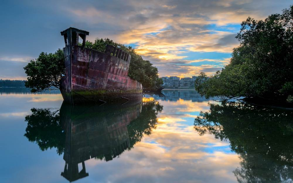 floating forest sydney australia Australias Fairy Tale Floating Forest