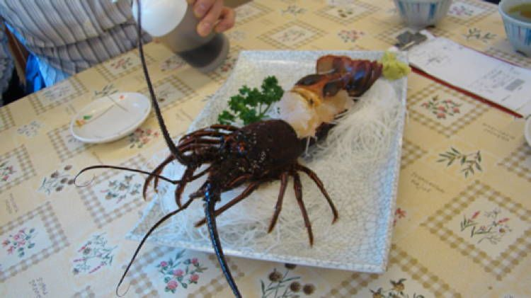 Bizarre Seafood Odori 2