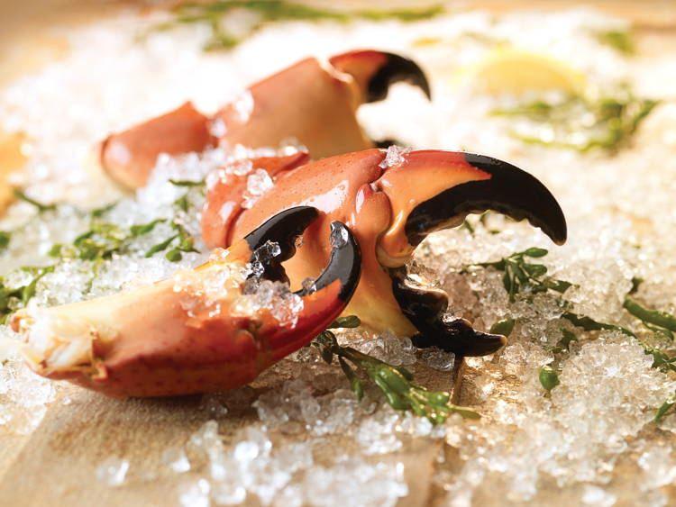 Bizarre Seafood Stone Crab 2