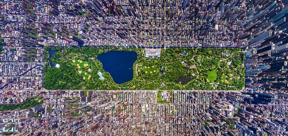 Overhead Photograph Of Central Park