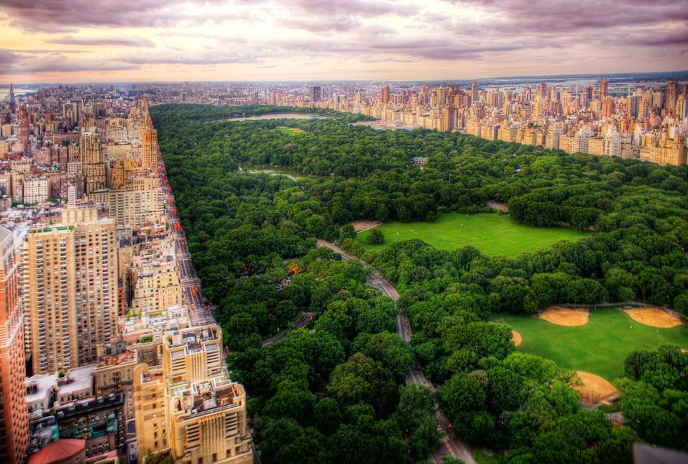 Most Incredible Photographs Of New York City Central Park