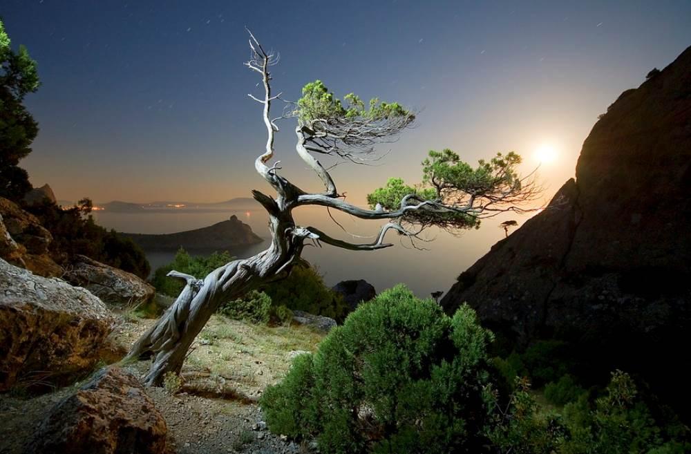 Night In Crimea